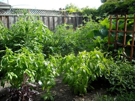 digit.chris&emily.garden