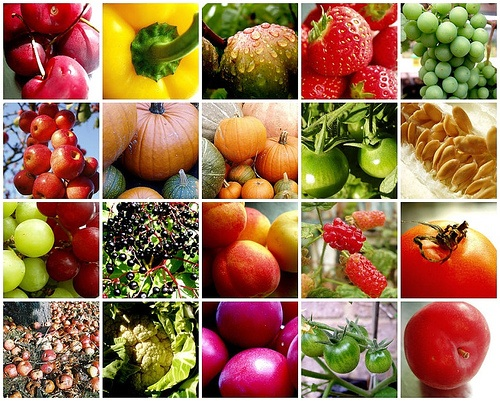fruit-vegetable-mosaic