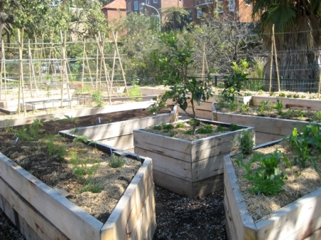 kirribilli.community.garden.1